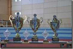 Награды 1