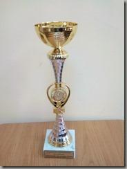 Кубок победителей